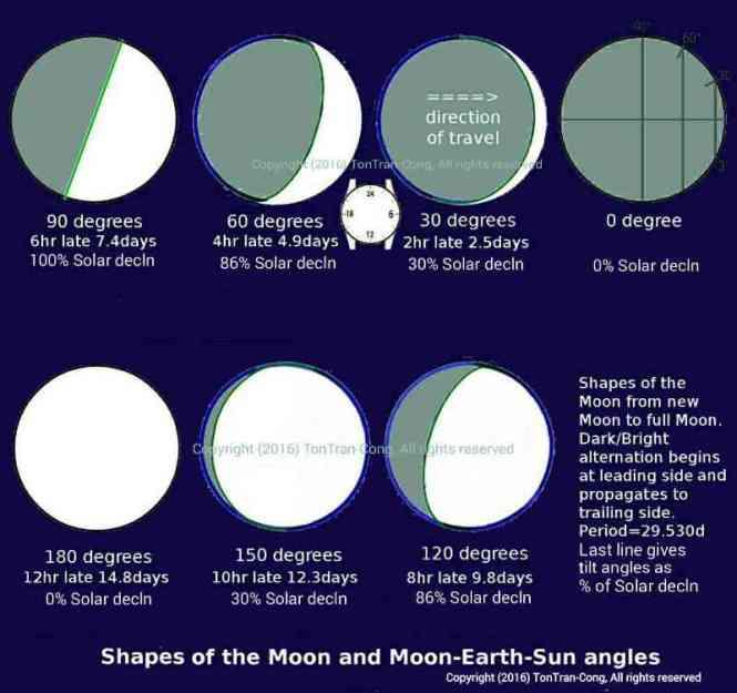 moonshapesnangles4c.jpg